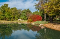 springfield;japanese-garden;water;trees;sky