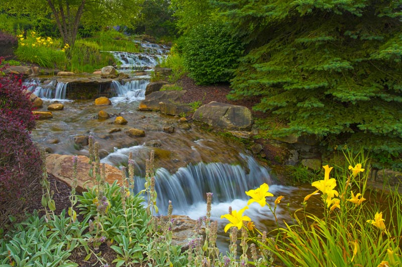 Waterfall;Moving water;flowers;waterfalls;Hamilton county;stream;creek;Midwest;yellow;green;Indiana