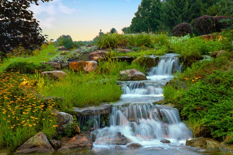 Waterfall;Nature;stream;creek;moving water;senic;Hamilton County;Indiana;Midwest;flowers;yellow;green;beauty;spring;beauty