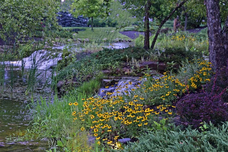 Waterfall;Nature;stream;creek;moving water;senic;Hamilton County;Indiana;Midwest;flowers;yellow;green;peaceful;beauty