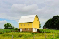 farm;barn;yellow;ivey;Indiana;midwest