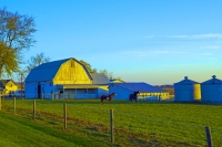 Barn;Barns;Farm;Farms;Horses;Indiana;Midwest;Miami-County;rural;White;Green