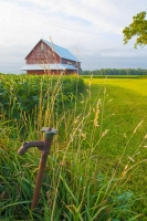 Farm;farming-water-pump;barn;barns;red;green;Tipton-County;Indiana;Midwest;Vertical