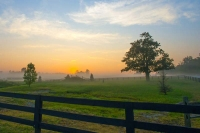 Sunrise;fence;Kentucky;Lexington;orange;gold