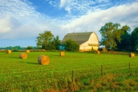 Barn;hay;round;rolls;bales;Tipton-County;farm;rural;Indiana;Midwest;white;brown;green