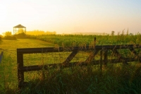 Sunrise;gold;orange;Indiana;Midwest;rural;farm;farming;Marshall-County;Midwest;gate