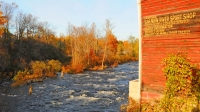 Fall-Colors;fisherman;fishing;river;stream;orange;yellow;New-York;North-East;East-Coast;Salmon-River