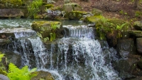 Waterfall;Indiana;Midwest;Creek;Moss;Green;Woods;Gibson-County
