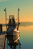 Boats;Blue;sea;Senic;Shrimp-Boats;South-Carolina;Southeast;Costal;Nautical;ocean;Yellow;Sunrise;Fish