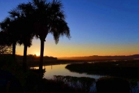 Palm-Trees;sunrise;Marsh;Orange;Blue;Soulth-Carolian;SC;Mist;South-East