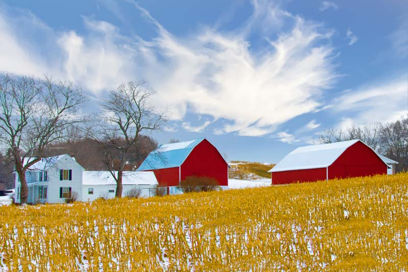 Barn;Farm;Snow;Corn field;rural;Wisconsin;Eau Clair;Midwest;Red;white;gold