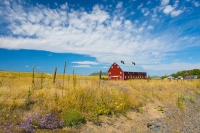 Barn;Barns;Ranch;Colorado;red;blue;yellow;purple;flowers;west;Colorado-Springs