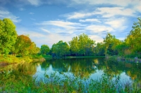 Pond;water;morning;green;gold;reflection;Howard-County;Indiana;Midwest