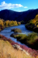 blue;vertical;trees;water;landscape;river;stream;fall;Rocky-Mountains
