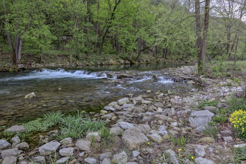 nature;water;stream;creek;river;flowing;spring;autumn;green;springtime;roaring river;state park;mo;missouri;barry county;cassville
