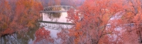 lake;springfield;missouri;autumn;fall;orange;red;horizontal;landscape;bridge;mo