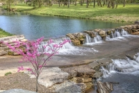 dogwood-canyon;mo;missouri;water;nature;spring;creek;lampe