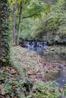 nature;water;stream;creek;river;flowing;fall;autumn;green;early-fall