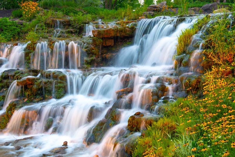 Waterfall;Nature;stream;creek;moving water;senic;Hamilton County;Indiana;Midwest;flowers;yellow;green;beauty;yellow;peaceful