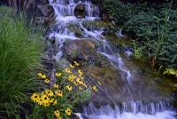 Waterfall;stream;moving-water;nature;creek;brook;Hamilton-County;Indiana;Midwest;green;yellow