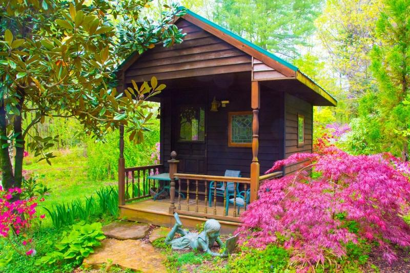 Flowers;Flower;Indiana;Spring;Green;Woods;Gibson County;pink;Midwest;girl;child;cabin