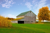 Barn;farm;family-farm;Cass-County;Indiana;Midwest;weathered-wood;orange;green;cornfiled;rural;fall;f