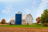 Barn;barns;farm;green;Indiana;Midwest;Miami-County;rural;weathered-wood;farming;old;antique;gray;whi