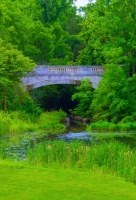 Bridge;green;vertical;Indiana;Midwest;pond;Fort-Harrison;Marion-County