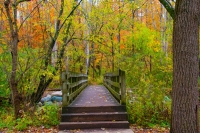 Bridge;foot-bridge;walking-path;fall-colors;fall-leaf-color;Indiana;Midwest;rural;beauty;peaceful;pu