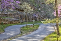 dogwood-canyon;mo;missouri;nature;lampe;walking-path